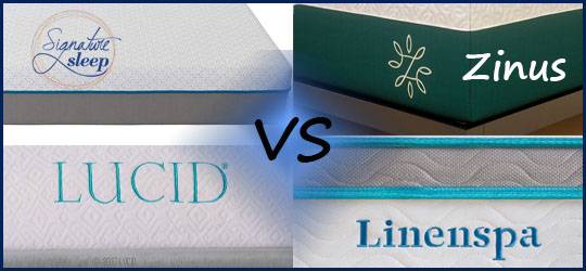 Linenspa vs Lucid vs Zinus vs Signature Sleep