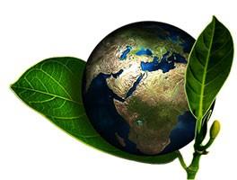 Environmentally-Friendly Mattress